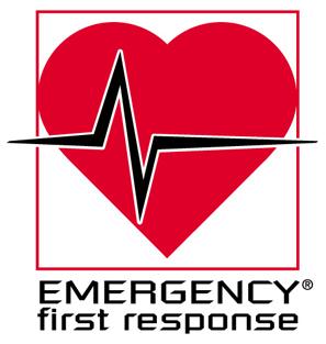 Первая помощь медицинская оказание первой помощи курсы EFR